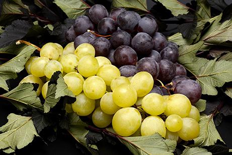 Uva bianca e nera