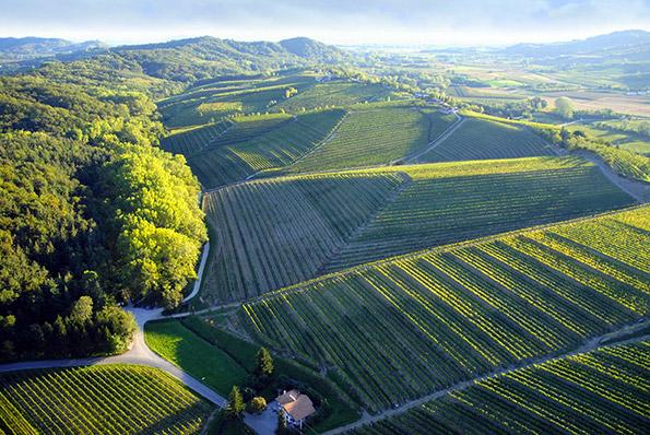 Veduta dei Colli Orientali del Friuli