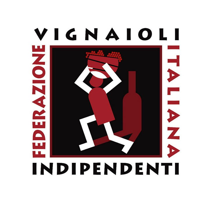 logo FIVI