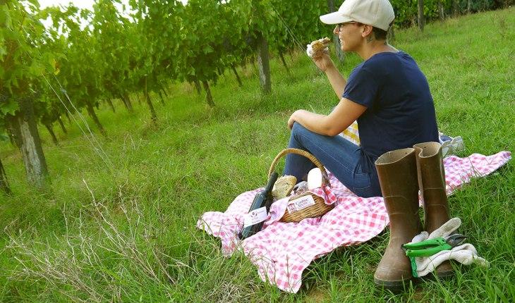 La merenda in vigna del Movimento Turismo del Vino Toscana