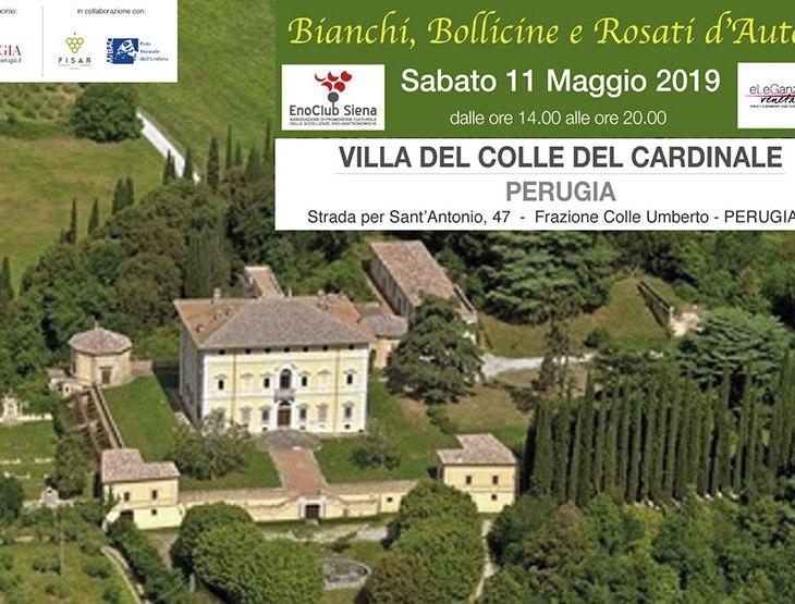 BIANCHI, BOLLICINE E ROSATI D'AUTORE A PERUGIA