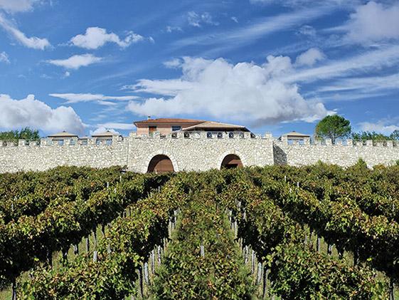 Veduta dell'azienda vinicola La Fortezza