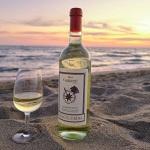 Calice di Vermentino Valcolomba Doc 2019 Carpineto sul mare
